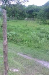 Terrenos R$3.000