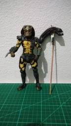 Predador wasp