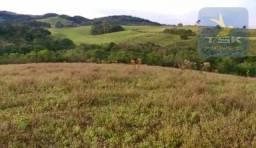 CH0349 Chácara à venda, 64.000 m² por R$ 265.000 - São Gabriel - Quitandinha