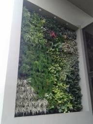 Manutenção  em jardim vertical