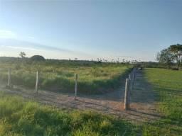 Título do anúncio: Fazenda 348 hectares 154 de abertura