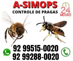 Vespas, abelhas e pragas Dedetização Detetização