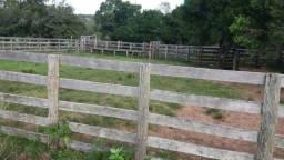 Arrendo Fazenda com 240 hectares em Caçapava do Sul