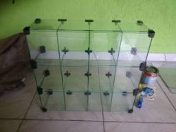Vitrine baleiro de vidro novo