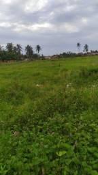 Vendo este terreno localizado na praia da Caponga