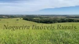 Fazenda com 51 alqueires na região de Angatuba (Nogueira Imóveis Rurais)