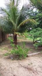 Vendo terreno murado de 40m X 40m, com 2 frentes na Tabuba, a 5 minutos do Cumbuco