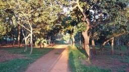 Chácara rural à venda, Sítios de Recreio Mansões do Campus, Goiânia.