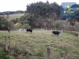CH0243 - Quitandinha chácara 5.7 Alqueires, planta pasto água