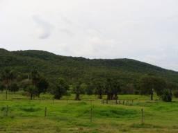 Fazenda em Porangatu - GO