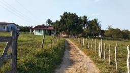 Fazenda, Sitio em São Gonçalo dos Campos - Sobradinho