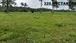 Título do anúncio: Fazenda com 320 hectares a venda na Zona Rural de Porto Velho/RO