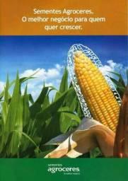 Adubo plantio,cobertura,npk,semente de milho,sorgo,brachiarão,mombaça,piatã