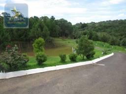 Quatro Barras Área industrial - 96.000 m² localização estratégica AR0021