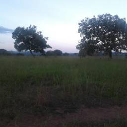 .Fazenda município de moipora Com 102 alqueres