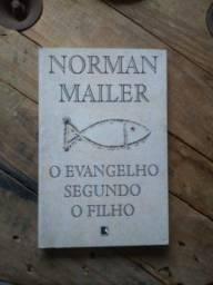 Livro O Evangelho Segundo O Filho