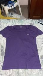 Camisas LACOSTE, RESERVA e ACOSTAMENTO