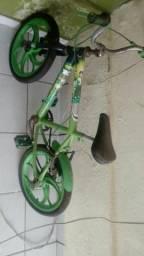 Bicicleta Infantil (Carpina)