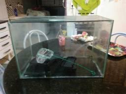 Vendo aquário + Filtro Hang On