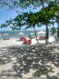 Bar na praia de mangue seco