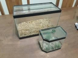 Aquario e betteira