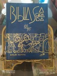 Vendo bíblia católica