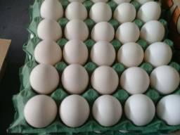 30 ovos tamanho extra 13 reais anuncio em franca sp.