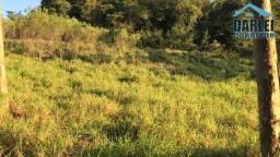 Sítio em Rolante, Fazenda Passos. Terreno 5000m². Peça o Vídeo Aéreo
