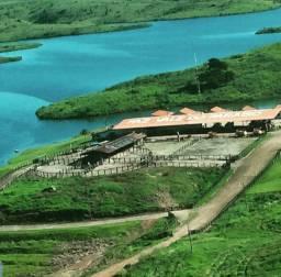Fazenda espetacular Sul do Pará. 72.000 hectares.