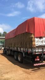 Cargo bitruck