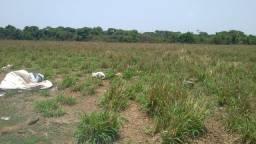 Fazenda 202 Alqueires em Gurupi