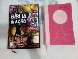 Bíblias cristãs seminovas
