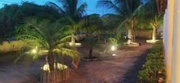 Chácara caatinguinha
