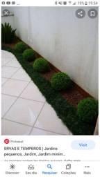 Limpeza de jardim em geral