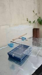 Gaiola de calopcita ( aves mansa)
