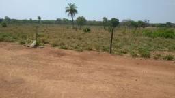 Fazenda 100 alqueires em formoso do Araguaia