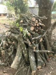 Lenha de mangueira e abacateiro e outros