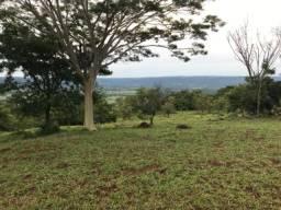 Vendo 12,1 hectares de terra