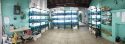 Vendo aquários
