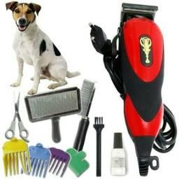 Kit Máquina Profissional de tosa cachorro e gatos Qirui