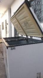Frizeer horizontal de 2 portas