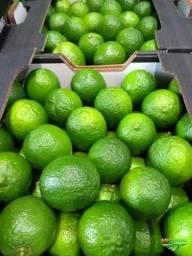Limão Taite kg