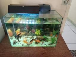 Troco ou vendo aquário completo