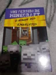 Livro de minecraft