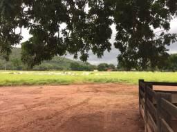 Preciso de um trabalhador rural caseiro próximo de Cuiabá MT