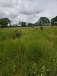 Fazenda em urucuia 600 hectares 2.400.000.00