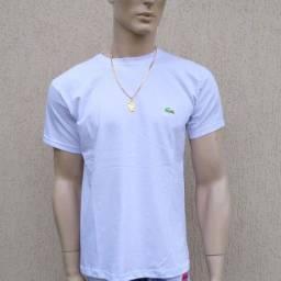 Camisas Masculinas 100% algodão