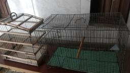 Duas gaiola 20 reais