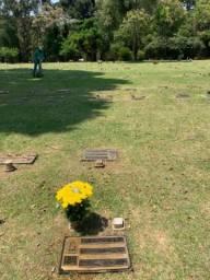Jazigo área nobre Cemitério Parque Iguaçu