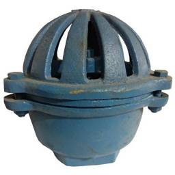 "Válvula De Pé (cebola) Ferro Fundido Azul 1.1/4"""